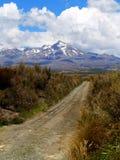 Zet Cook, Nieuw Zeeland op Stock Foto