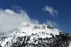 Zet de Blauwe Hemel van Rose Nevada With Snow Clouds And op royalty-vrije stock foto's