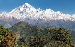 Zet Dhaulagiri - Nepal op stock afbeeldingen