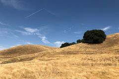 Zet Diablo State Park in Walnut Creek in Californië op stock fotografie