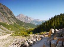 Zet Edith Cavell Trail op stock fotografie