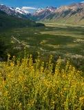 Zet Fitz Roy, Los Glaciares NP, Argentinië op Royalty-vrije Stock Foto's