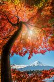 Zet Fuji in Autumn Color, Japan op royalty-vrije stock afbeeldingen