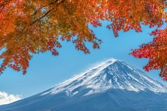Zet Fuji in Autumn Color, Japan op Stock Fotografie