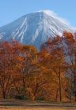 Zet Fuji in Daling op Royalty-vrije Stock Afbeelding