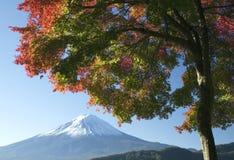 Zet Fuji in Daling V op Royalty-vrije Stock Foto's