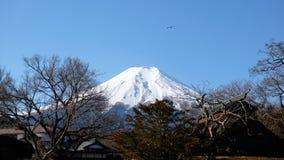 Zet Fuji in de Winter op stock foto's