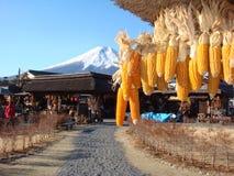 Zet Fuji dichtbij het dorp van Oshino op Hakkai Stock Afbeelding