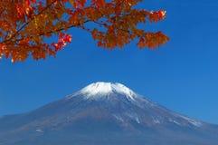 Zet Fuji in falll op royalty-vrije stock afbeeldingen