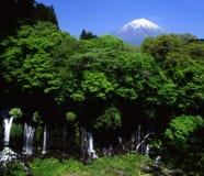 Zet Fuji op Royalty-vrije Stock Foto's