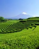 Zet Fuji XCII op royalty-vrije stock fotografie