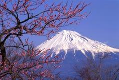 Zet Fuji XXIII op Stock Foto's