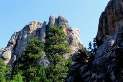 Zet het Nationale Herdenkingsrushmore zijaanzicht van Rushmore op stock afbeeldingen