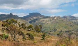 Zet het Nationale Park van Elgon, Kenia op Stock Fotografie