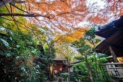 Zet Hiei op Royalty-vrije Stock Foto