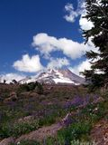 Zet Hood Above Timberline Lodge Oregon op royalty-vrije stock fotografie