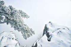 Zet Huangshan in de winter op royalty-vrije stock foto's