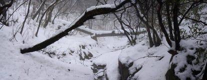 Zet Huangshan-sneeuw op Royalty-vrije Stock Afbeeldingen