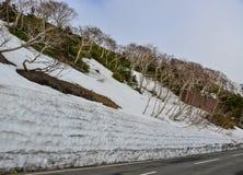 Zet Iwate in Tohoku, Japan op stock fotografie