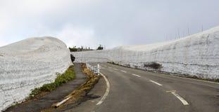 Zet Iwate in Tohoku, Japan op stock afbeeldingen