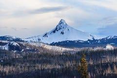 Zet Kap in Oregon op met sneeuw de V.S. wordt behandeld die royalty-vrije stock foto