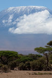 Zet Kilimanjaro op Royalty-vrije Stock Foto