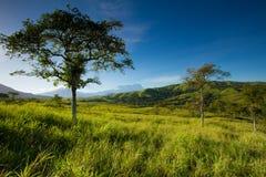 Zet Kinabalu, Sabah op stock afbeelding