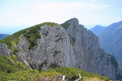 Zet Konj, Kamnik-Alpen, Slovenië op Stock Foto