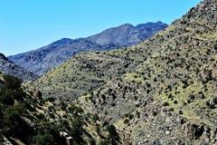 Zet Lemmon, Tucson, Arizona, Verenigde Staten op Royalty-vrije Stock Foto's
