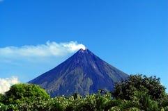 Zet Mayon op Stock Afbeeldingen