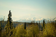 Zet McKinley, Denali in Alaska op Royalty-vrije Stock Foto's