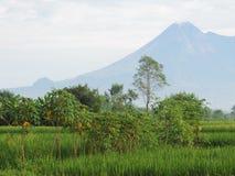 Zet Merapi Indonesië 9 Maart 2016 op Stock Afbeelding
