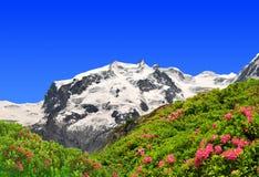 Zet Monte Rosa op Stock Fotografie