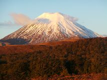 Zet Ngauruhoe, Nieuw Zeeland op royalty-vrije stock foto