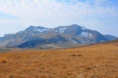 Zet Oshten op De Kaukasische reserve Rusland Royalty-vrije Stock Foto