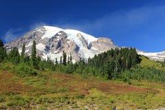 Zet Rainier National Park Washington State Verenigde Staten op stock afbeelding