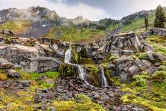 Zet Rainier Nature op Stock Fotografie