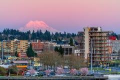 Zet Rainier Sundown Olympia Washington op royalty-vrije stock foto's