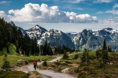 Zet Rainier Vista op Royalty-vrije Stock Afbeeldingen