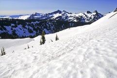 Zet Regenachtiger en de Bergen van de het Noordencascade, Washington State op stock foto's