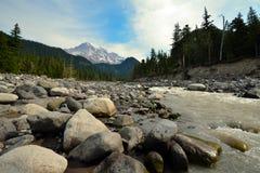 Zet regenachtiger nationaal park in de V.S. op Stock Afbeeldingen