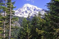 Zet Regenachtiger, Washington, de V.S. op royalty-vrije stock foto's