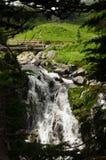 Zet Regenachtiger, Washington State, de V.S. op royalty-vrije stock fotografie
