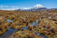 Zet Ruapehu-het Nationale Park van Landschapstongariro, Nieuw Zeeland op stock foto