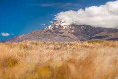 Zet Ruapehu op stock afbeeldingen