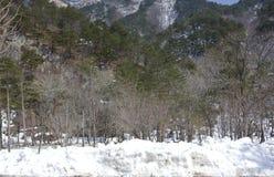 Zet Seoraksan op Stock Fotografie
