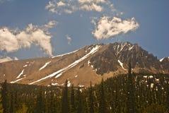 Zet Speculant in Nevada op stock afbeelding