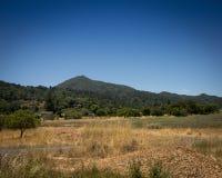Zet Tamalpais, de provincie van Marin, CA op Stock Foto's