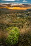 Zet Taranaki bij perfecte de vulkaanberg van zonsondergangnieuw zeeland op stock afbeelding
