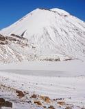 Zet Taranaki op, zet op Egmont Nationaal Park, Nieuw Zeeland stock afbeelding